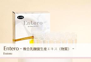 複合乳酸菌生産エキス(物質)Entero